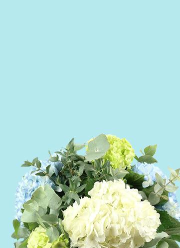 Same day Flowers Lewisham
